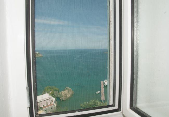 Apartment in Ponza - Turistcasa - Giancos 69 -
