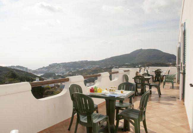 Apartment in Ponza - Turistcasa - I Conti 1006 -