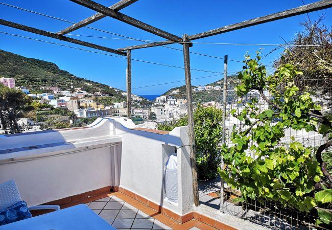 Apartment in Ponza - La Maison Fiorita - mono La Vite -